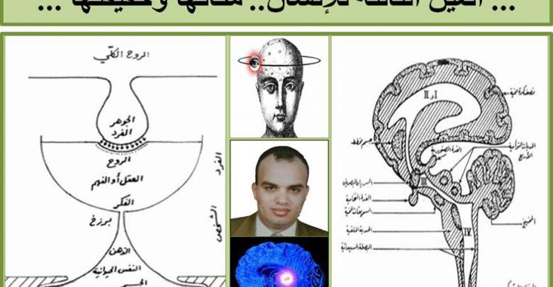 Photo of حقيقة العين الثالثة للأنسان واين مكانها