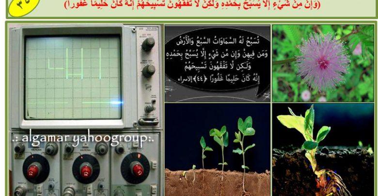 Photo of الاكتشافات العلمية الكونية والتى كشفها القران الكريم قبل قبل 14 قرنا من الزمان
