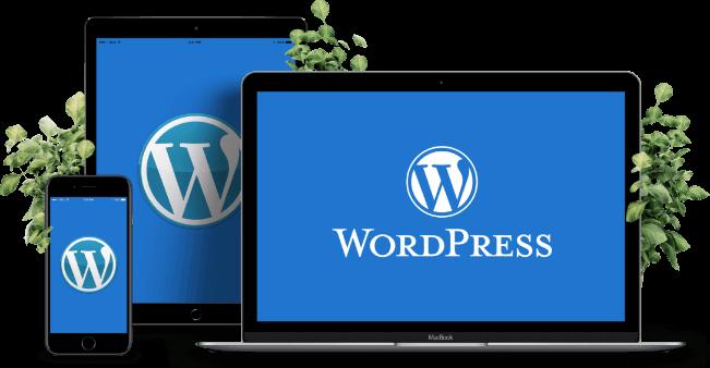 ما هو ووردبريس WordPress ؟